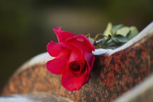 Bestattungen, Blumen Schurig, Grabpflege