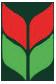 Blumen Schurig, Logo, Portrait